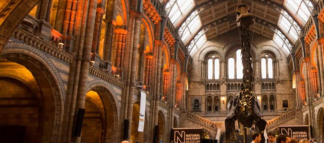 Museo di Storia Naturale a Londra: Natural History Museum of London